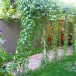 Hôtel de charme Jahongir B&B Samarkand 19